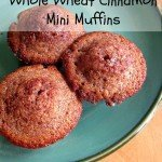 Whole Wheat Cinnamon Mini Muffins