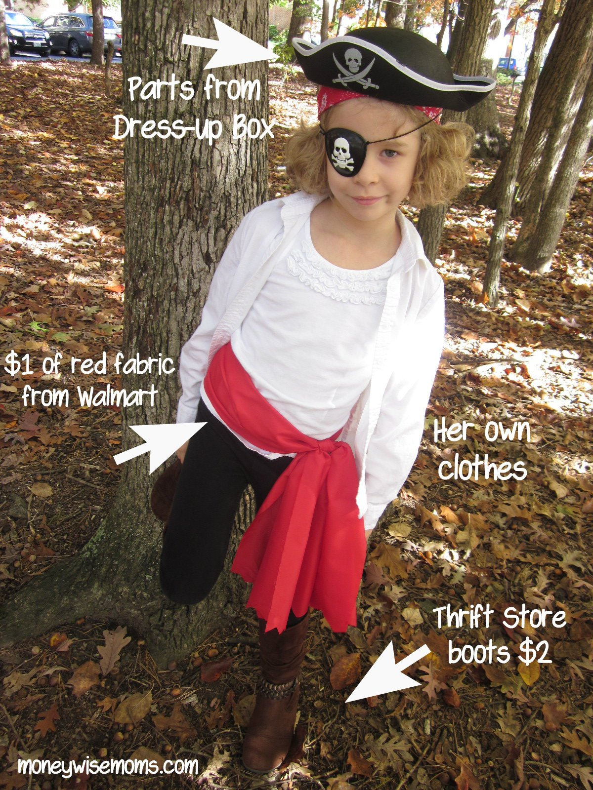 $5 DIY Owl Costume · Pirate Costume + Tips for a Moneywise Halloween  sc 1 st  Moneywise Moms & 5 Ways to Save on Halloween Costumes - Moneywise Moms