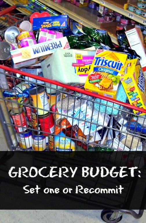 Grocery Budget (Set One or Recommit) | MoneywiseMoms