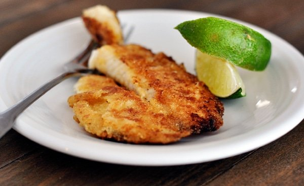 Tilapia recipes easy fried