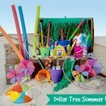 Dollar Tree Summer Fun {All NEW styles & colors!}