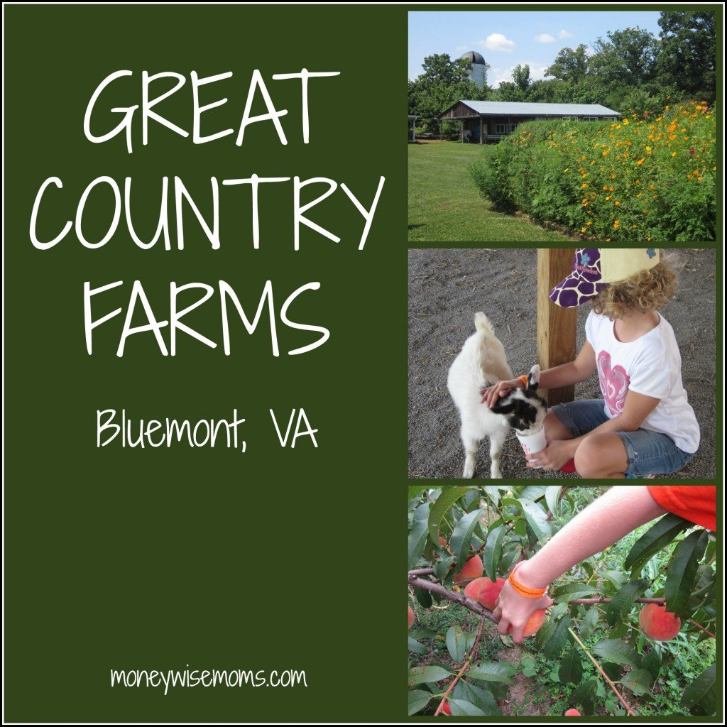 Great Country Farms - Bluemont Virginia #familytravel - MoneywiseMoms