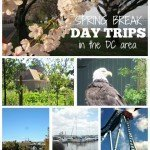 Spring Break Day Trips in the DC Area