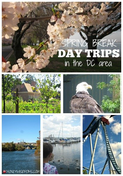 Spring Break Day Trips in the DC Area #familytravel | MoneywiseMoms