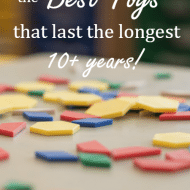 The Best Toys that Last the Longest (10+ years!)
