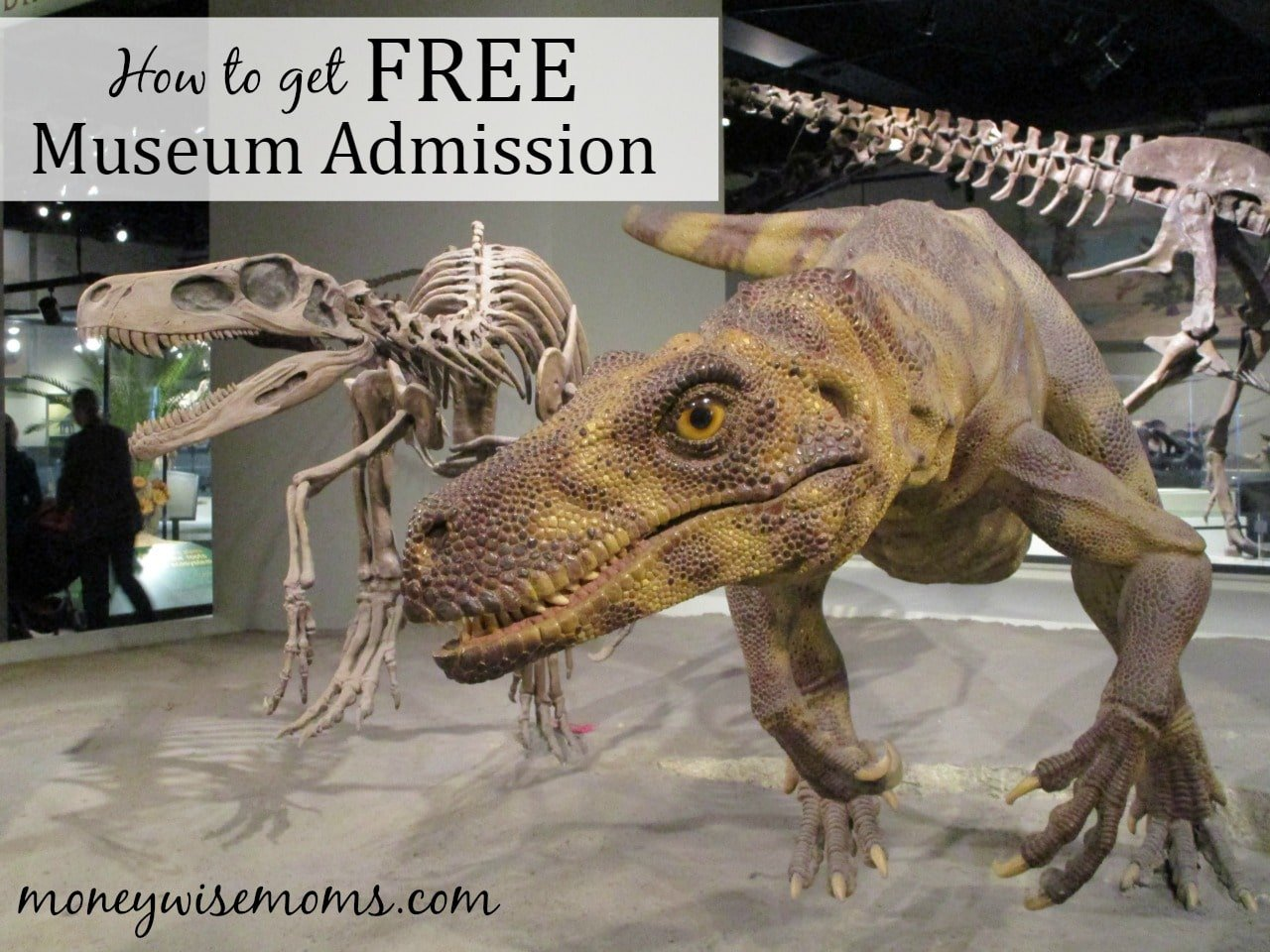 Free Museums Summer  Moneywise Moms - Museums on us bank of america list