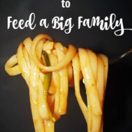 Frugal Ways to Feed a Big Family