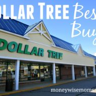Dollar Tree Best Buys: How to Shop Smart