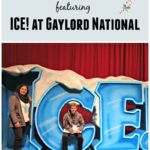 ICE! at Gaylord National 2016